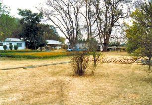 1c garden Aug 1993