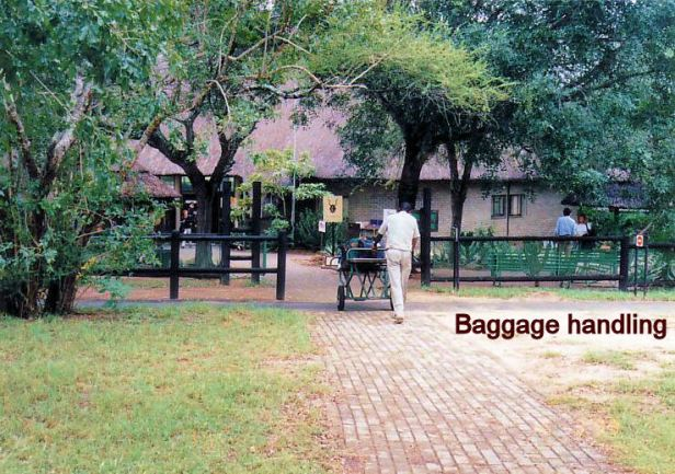 1f baggage handling