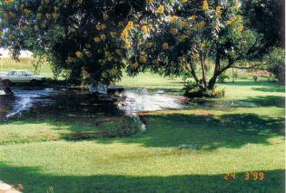 4d Front Garden - Flood Mar99