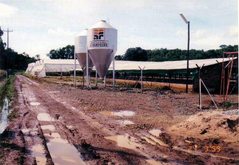 4e Chicken sheds - Flood Mar99