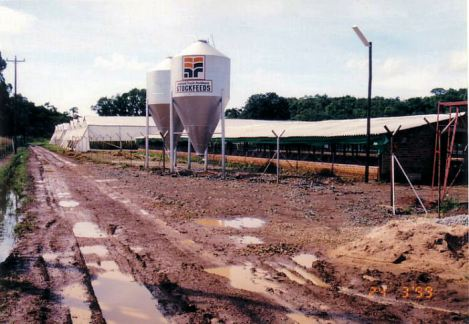 4e Chicken sheds - Flood Mar99