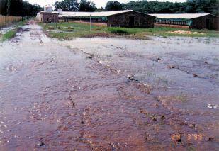 4h road in - Flood Mar99