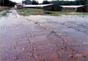 4h road in - Flood Mar99