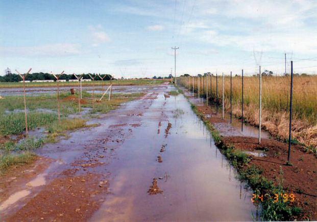 4l - Flood Mar99