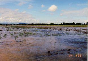4n - Flood Mar99