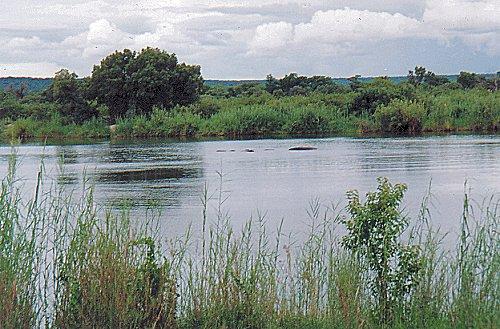 a-zambesi outside no.3-jan 2000