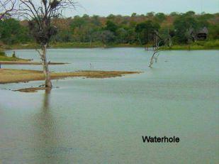a5 Waterhole