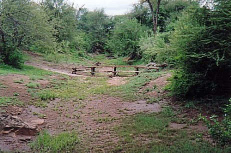 b-bridge to reception