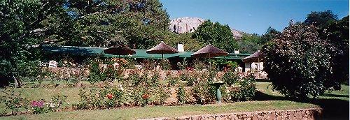 b-pinetree lodge a-dec 99