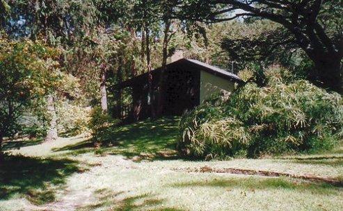 b-pinetree lodge p Ash-dec 99