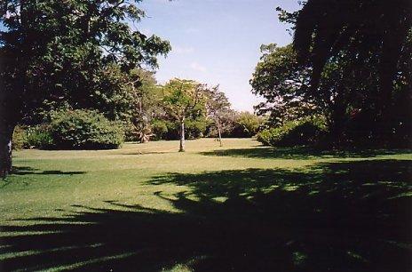 d-soft garden 2 dec 99