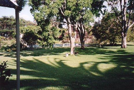 d-soft garden 5 dec 99