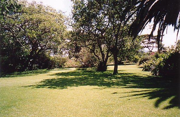 d-soft garden dec 99
