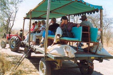f1 imiri jaunting cart