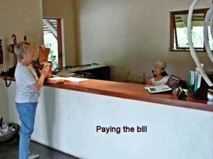 k6 paying the bill
