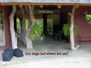 k7 our bags on departure