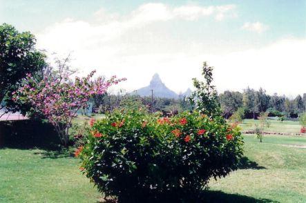 c6 Sofitel gardens