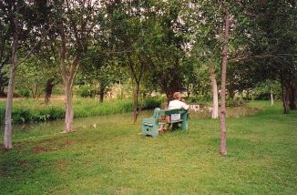 d-mo in elephant hills gardens - jan 2000