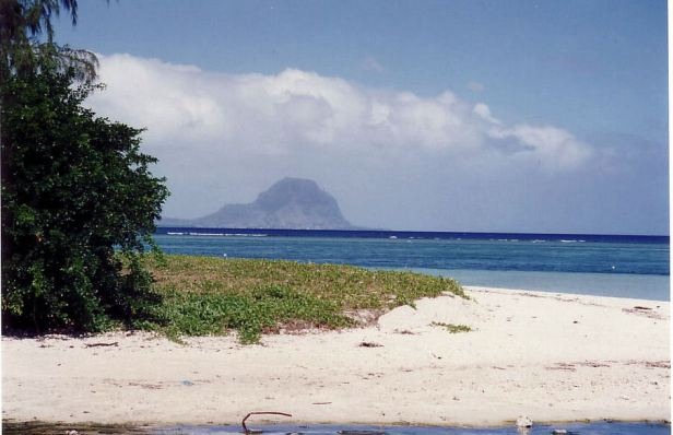 d6 beach at Sofitel