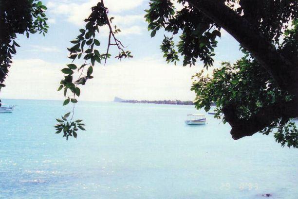 f8 Port Louis