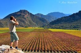 Farmlands - James Gradwell Photography & Photo Tours