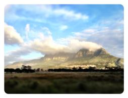 Rondebosch Common with Table Mountain.