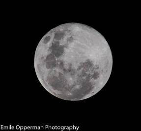 Super Moon - This stunning pic was taken earlier from Protea Heights, Brackenfell by Emile Opperman, a Grade 9 learner at Bellville High School.