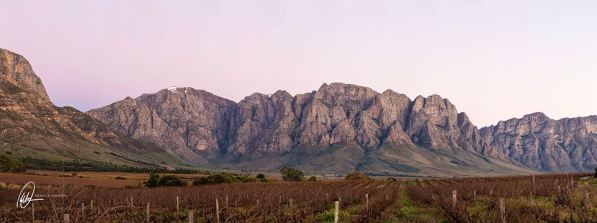 We headed down to the Slanghoek Valley to shoot the sun rising against these mountains.