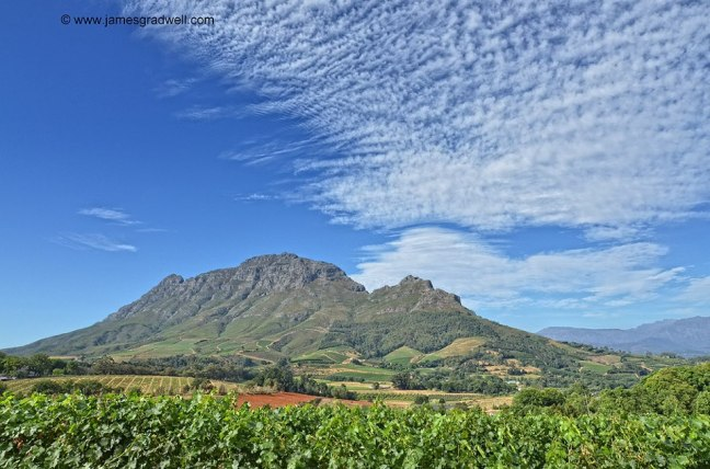 Winelands - James Gradwell Photography & Photo Tours