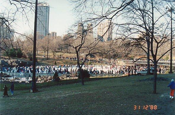 b6-Central Park-dec 88