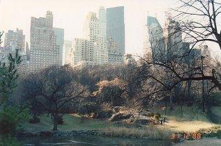 b7-Central Park-dec 88
