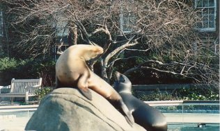 b9b-Central Park-dec 88