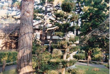 c4-Chinese Gardens-jan 89