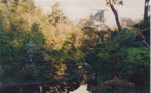 c5-Chinese Gardens-jan 89