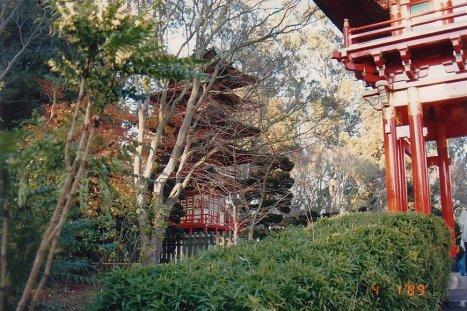 c6-Chinese Gardens-jan 89