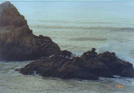 d6-Pacific-jan 89