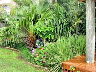 DSC00610 lower garden E