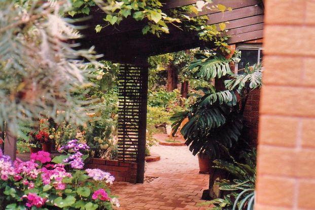 Image21a back garden