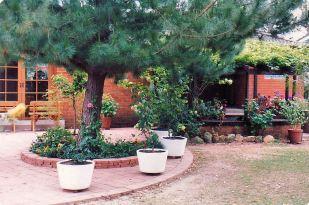 Image27b back garden