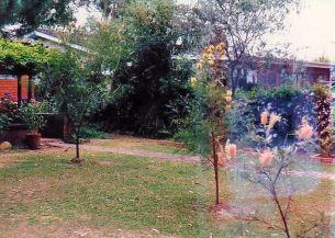 Image27c Allan's house