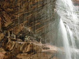 langur-monkeys-waterfall-unterthiner