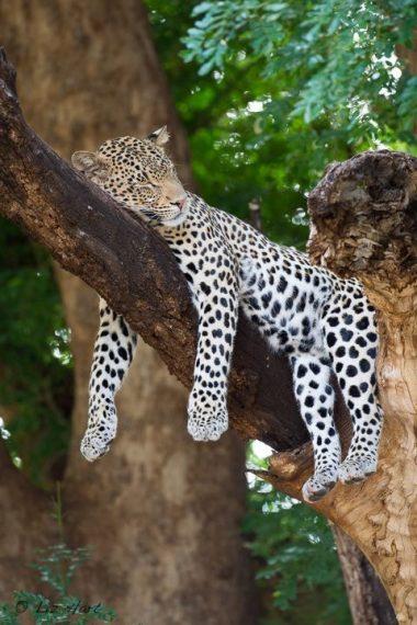 Sundays! (Africa, through my lens)