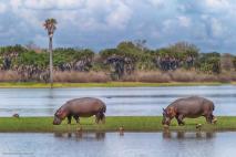 Selous Safari Camp - Michael Poliza Photographer