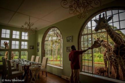 Table for three at Giraffe Manor, Nairobi, Kenya - Nicky Silberbauer Photography