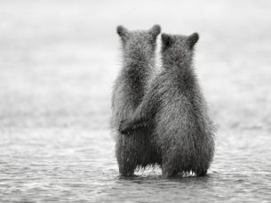 Two year old brother and sister waiting for Mom and salmon