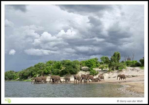 Crossing the Chobe River