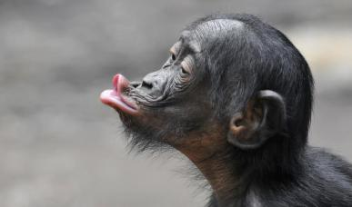 Kiss me quick by Kelly Okavango