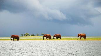 Lake Kariba in Zimbabwe.