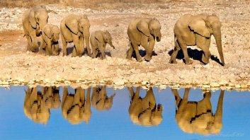 Namibia - James Gradwell Photography & Photo Tours