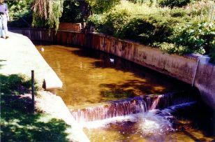c6 Waterfall